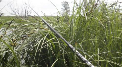 Ловля карася на болонскую удочку. Другие виды удилищ для ловли на поплавок.