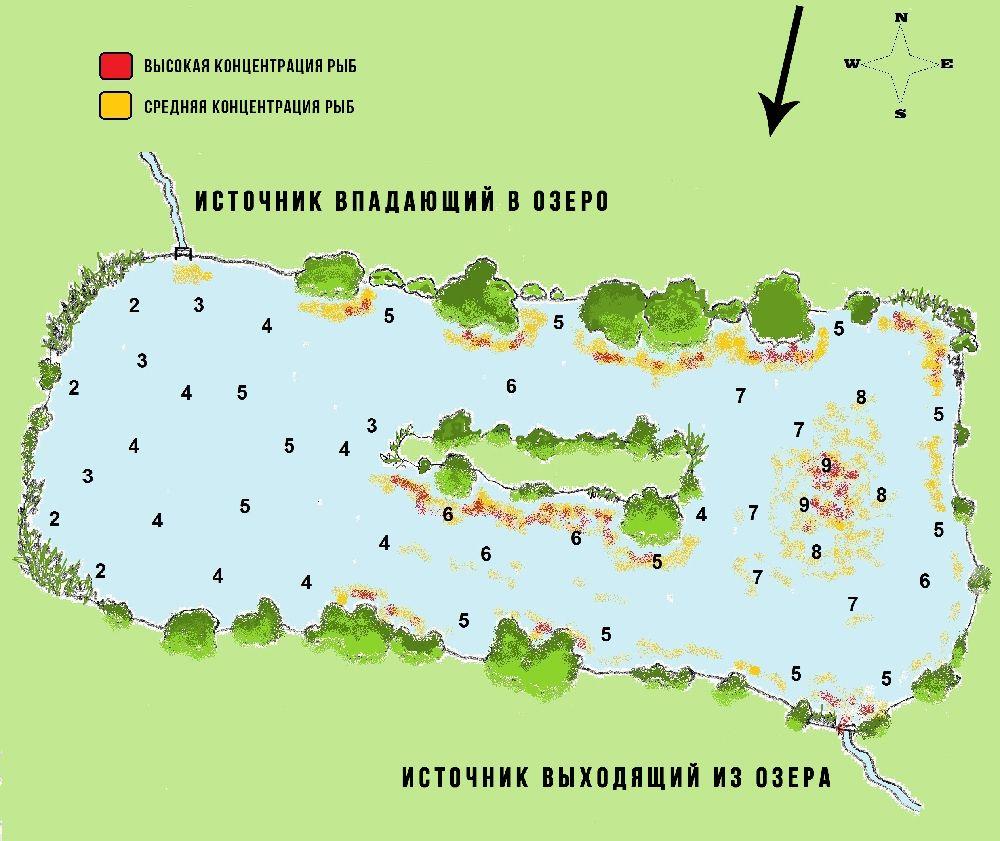 Иллюстрация влияния ветра и направления на рыбалку и клёв рыбы