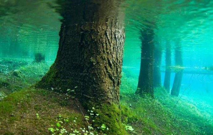 Глубина водоема и чистота воды
