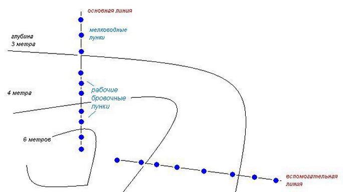 Схема расположения лунок на водоеме