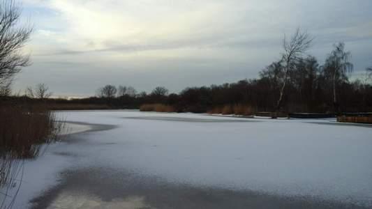 место стоянки плотвы зимой