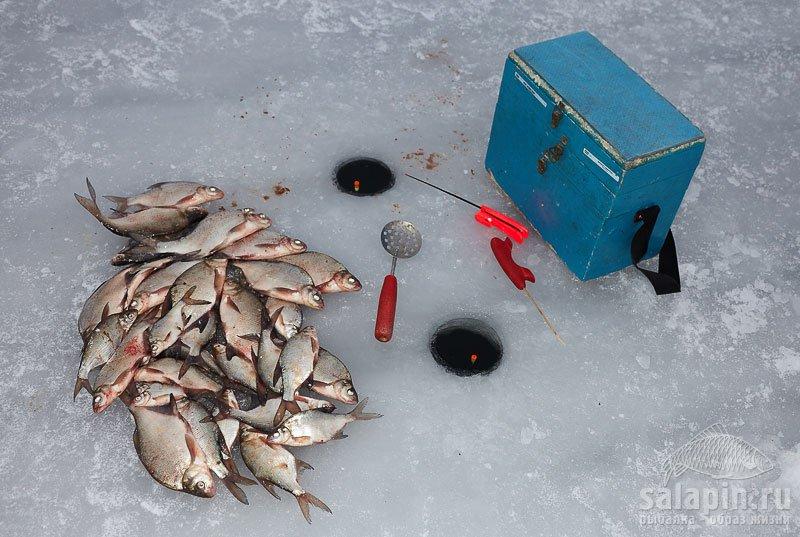 Сравнение отводного с «классикой» на очередной рыбалке