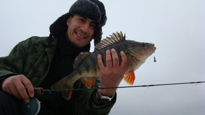 Рыбаки считают Балду эффективной снастью на окуня