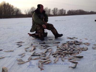 теории о влиянии давления на клев рыбы