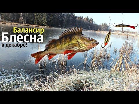 Как ловить окуня в декабре на балансир и блесну? Советы по ловле окуня зимой на балансир и блесну!