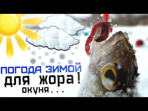 Именно в такую погоду у окуня жор зимой! Атмосферное давление и погода для ловли окуня зимой!