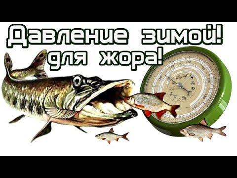 При каком атмосферном давлении лучше клюёт щука и другая рыба зимой? Давление для рыбалки зимой!