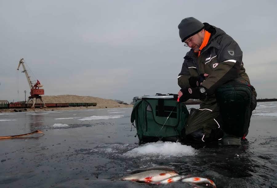 Ловля крупной плотвы зимой на безмотылку