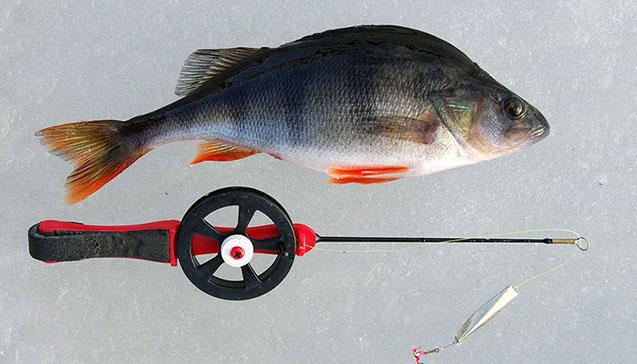 Оснастка по виду рыбы.jpg