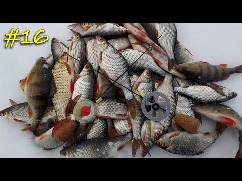 Зимняя рыбалка на безмотылку. Ловля плотвы и окуня на реке. Гвоздешарик vs Чертик.
