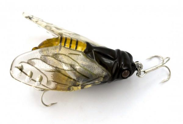 Макет жука