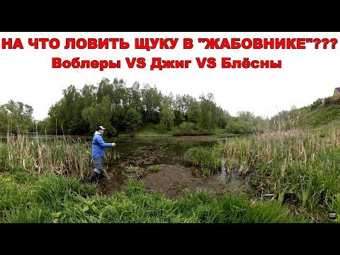 Как ловить щуку в траве, ряске и кувшинках? Летняя ловля щуки | ВихровLIFE