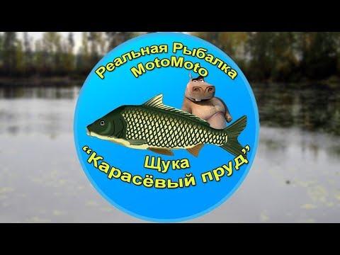 Как поймать Щуку на Карасёвом пруду [АРХИВ] | Реальная Рыбалка