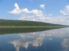 Река Тасеева (Красноярский край)