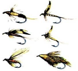 Мухи рыболовные