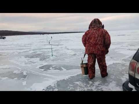 Белый хариус на Байкале