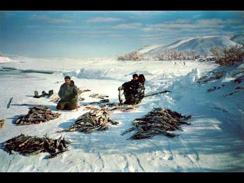 На что ловить хариуса зимой? Мотыль, червь, опарыш, блесна, силикон!