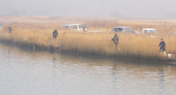 Осенью в устьях рек - ловят красноперку