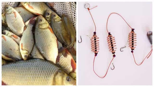 Убийца карасей - Донная снасть для рыбалки