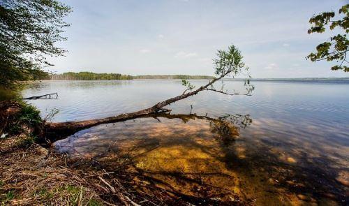Бесплатные места для рыбалки в Калининградской области
