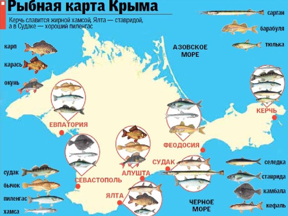рыбная карта Крыма