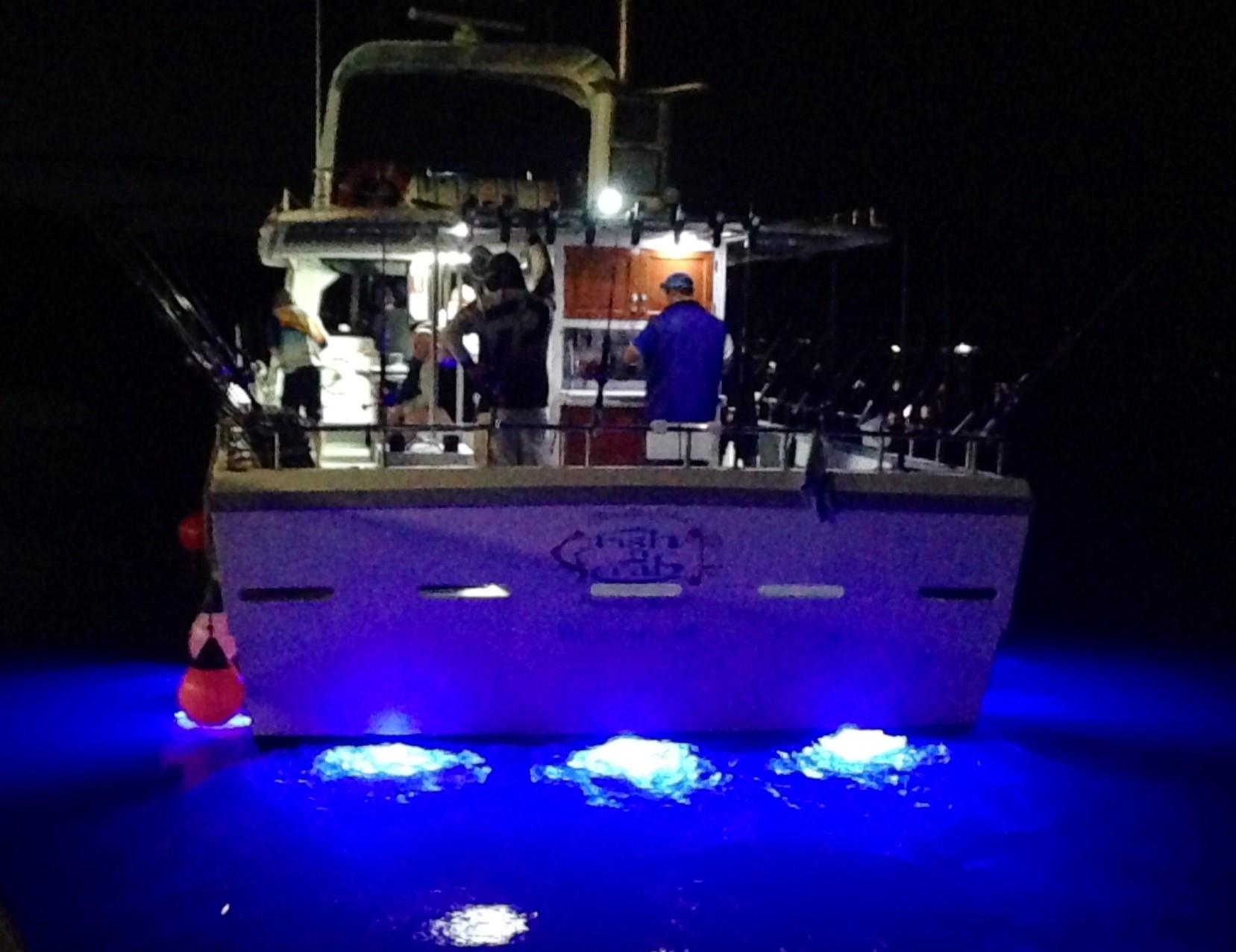 Ночная рыбалка на трофейную рыбу