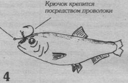 рис.4