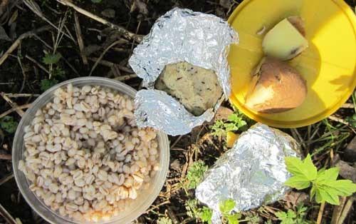 Насадки и прикормки для ловли на поплавочку