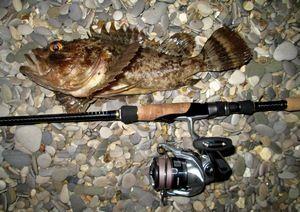 Изображение 4 : Морская рыбалка или «рокфишинг» по-черноморски. Часть 1. Снасти