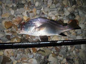 Изображение 3 : Морская рыбалка или «рокфишинг» по-черноморски. Часть 1. Снасти